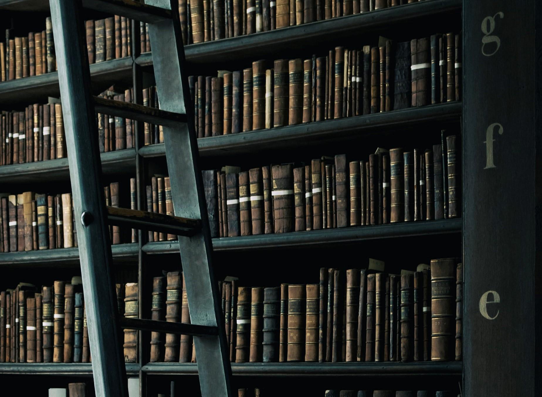 Femmes et littérature: Entretien avec Martine Reid